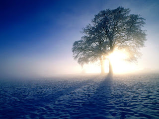 Sun at Winter Season