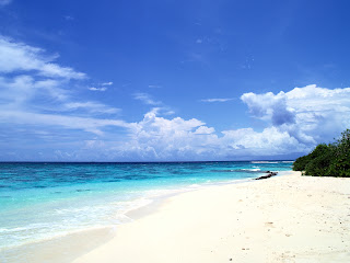 White Sand Beach Nature HD Wallpaper