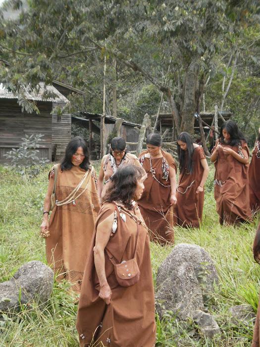 Mujeres Yaneshas en Palmazu