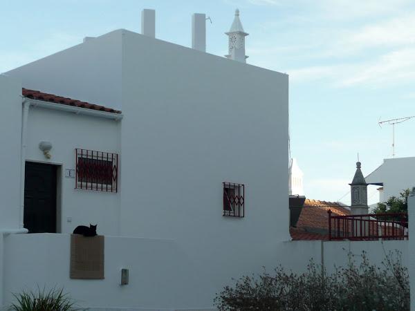 El Algarve (fotos de Patri y Alex)