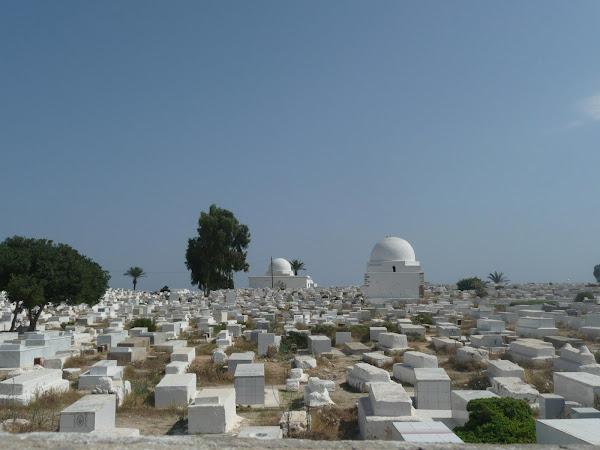 Tunez (fotos de Alex y Patri)