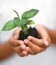 Pense de forma sustentável