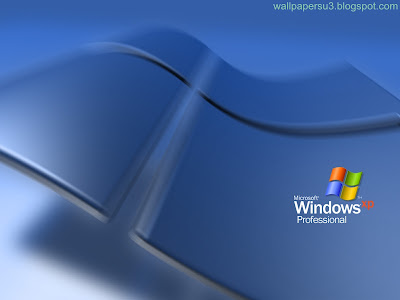 Windows XP Normal Resolution Wallpaper 2