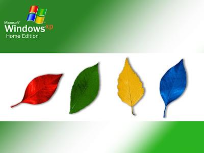 Windows XP Standard Resolution Wallpaper 27
