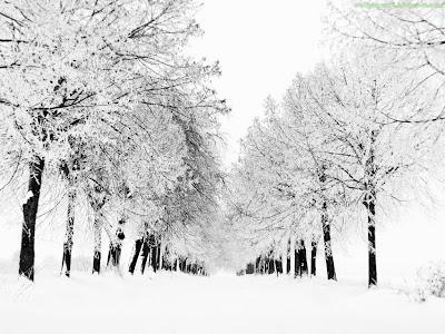 Winter Season Standard Resolution Wallpaper 11