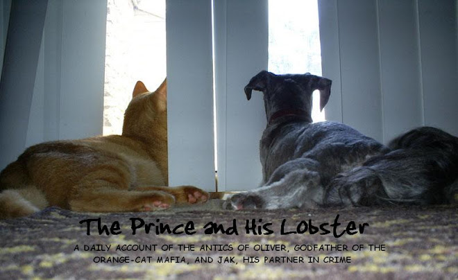 The Prince and His Lobster