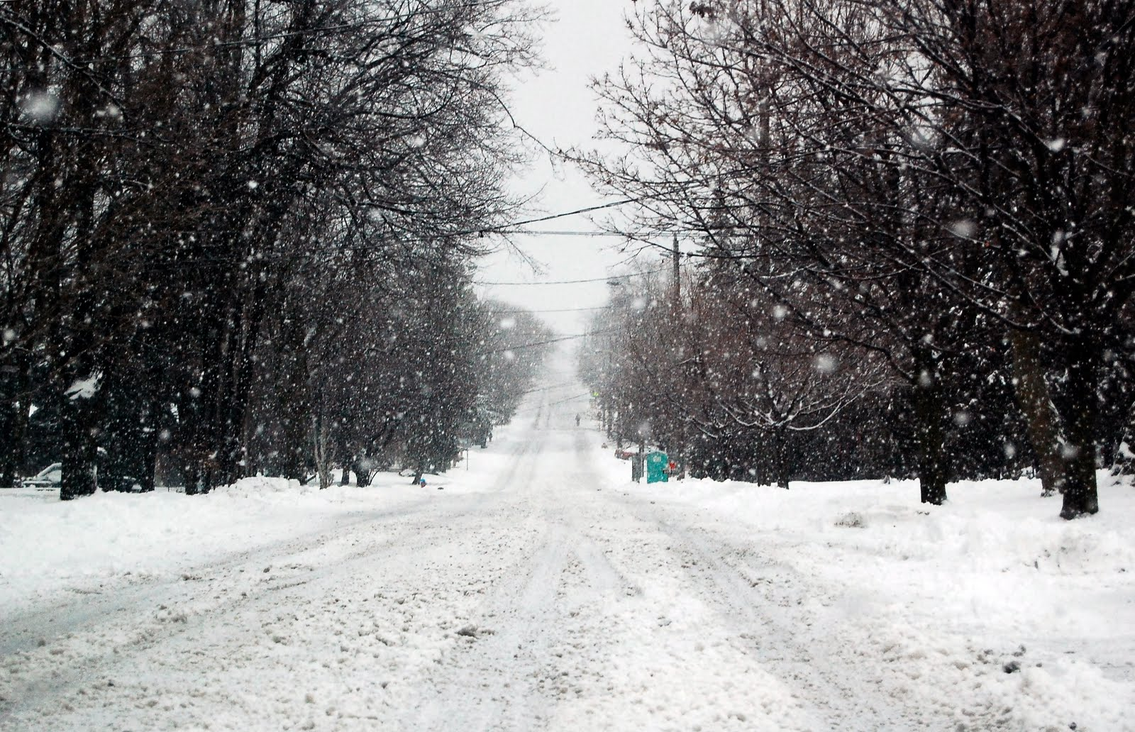 [snow+2]
