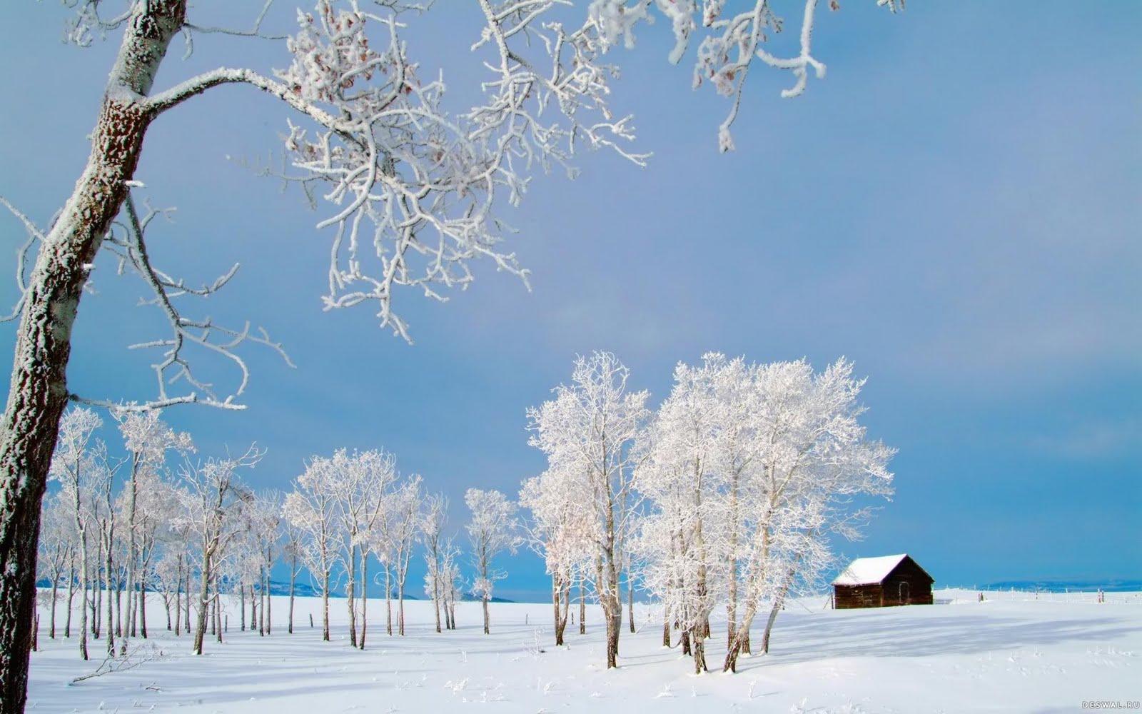 Winter House hunting hd wallpaper - Beauty O'v NaTuRe ....... !!!!!!!!
