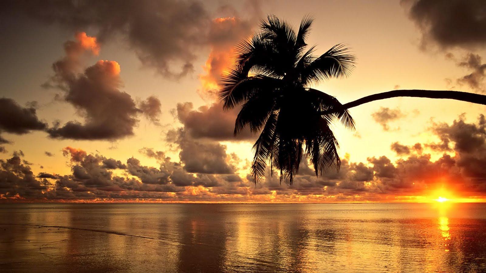 Hawaii Condos Golden sunset hd wallpaper - Beauty O'v NaTuRe ....... !!!!!!!!