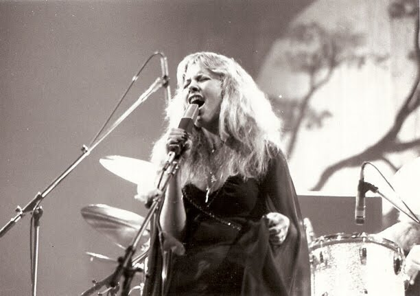 Stevie nicks essays