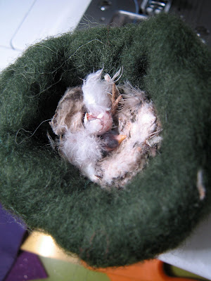 hi tree operation save baby hummingbirds and other news operation put baby in uterus our month 2 update 300x400