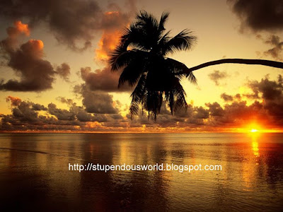 Amazing Pictures of Sunset