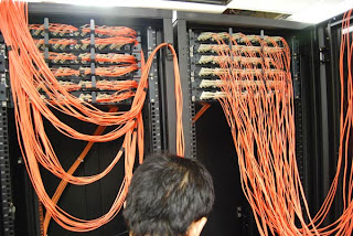 Cabling in MDF Room ~ USA Networking
