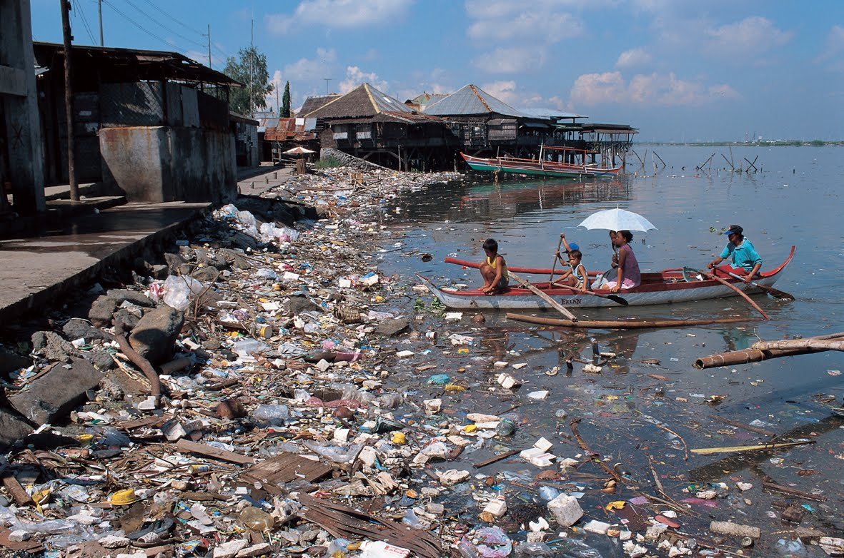 Essay for plastic pollution effects