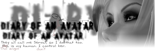 Diary of an avatar