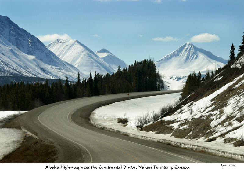 A Beetle Drive Margy's Musings: Alcan...