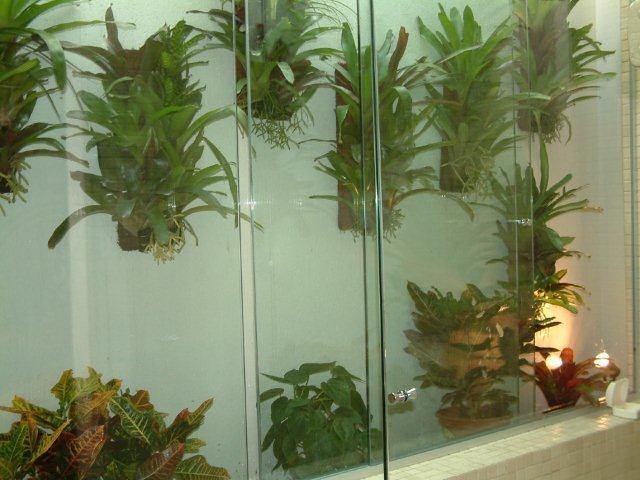 jardim vertical xaxim:Jardim Vertical, esta moda pegou!
