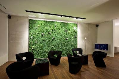 Elegant-green-office-with-black-table-and-armchairs-and-white-walls-green-plants-wall-and-TV