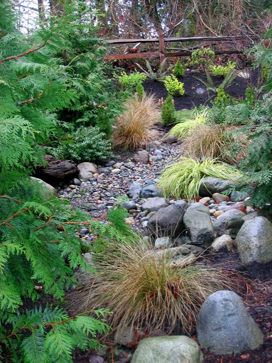 TousCela on Maple Grove How To Build Dry Creek Beds for