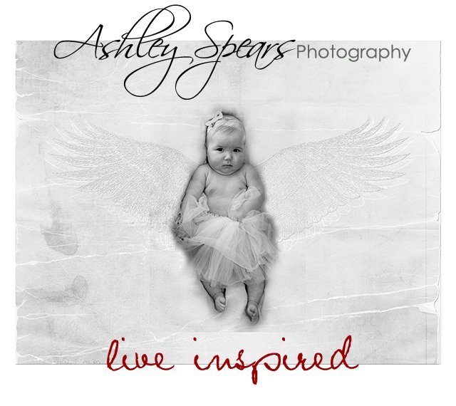 Ashley Spears Photography