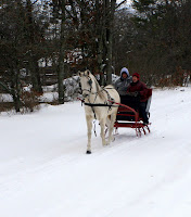 New Year's Day Sleigh Ride