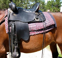 Leather Ties on Western Saddle for Securing Saddlebags