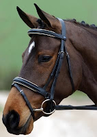 Crank Noseband Image from: http://www.croftequestrian.co.uk/index.php?main_page=product_info&cPath=1_8_24_86&products_id=1622