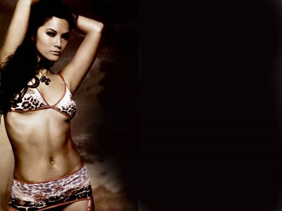 Hothollywoodwallpapers Kelly Hu Bikini Photos