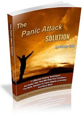 The Panic Solution Program