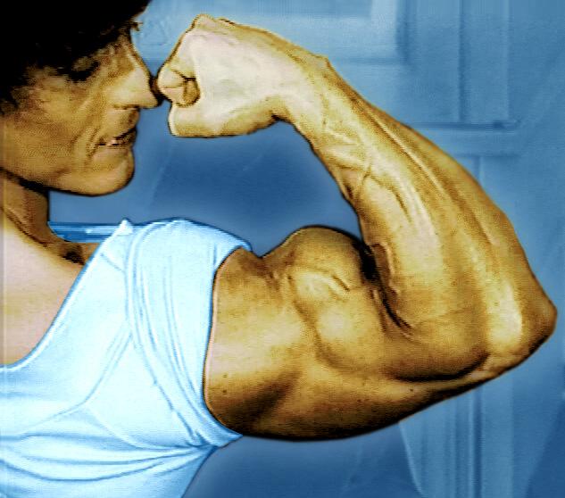 women heart attack pain. Women Heart Attack Lrft Arm