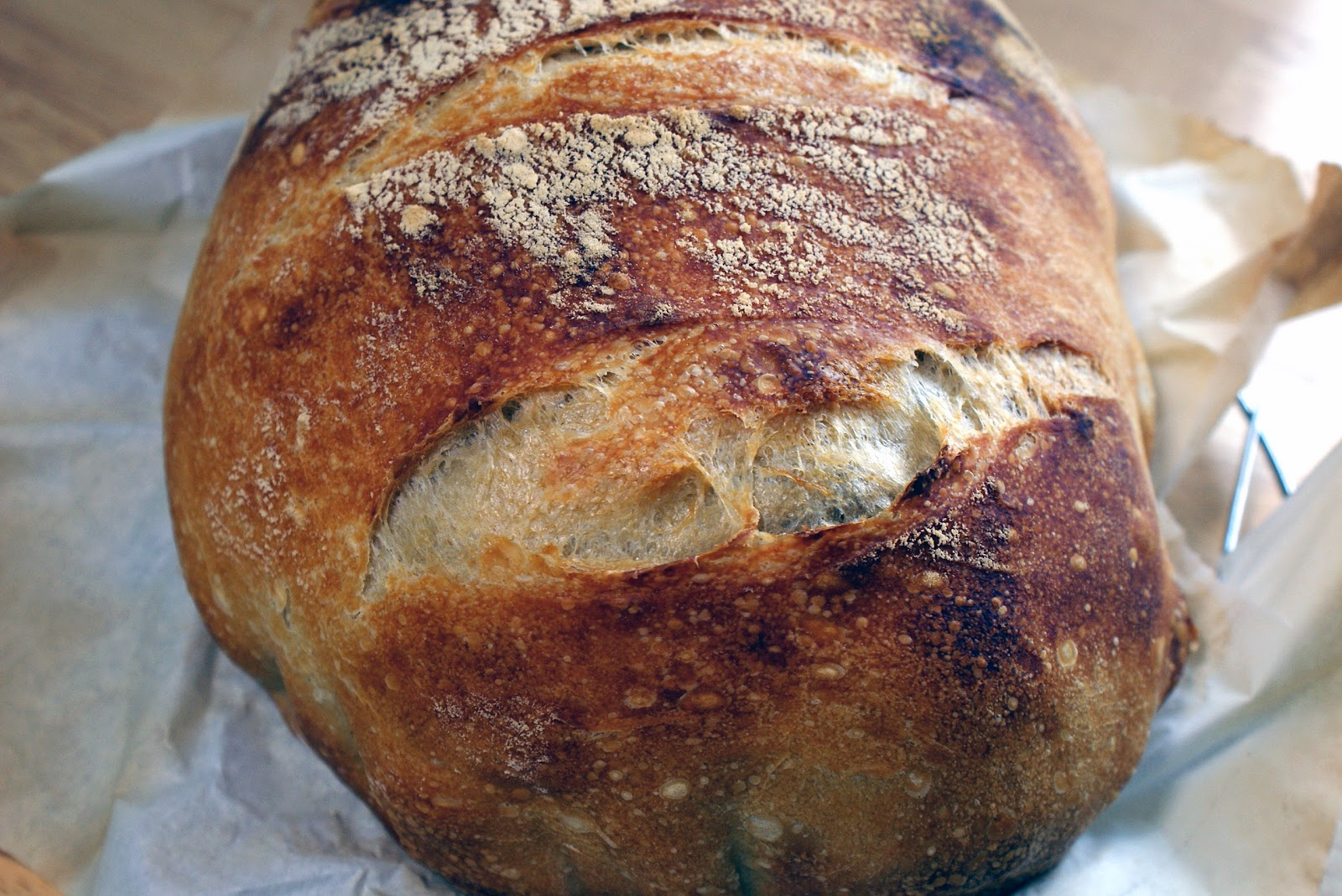How Much Bread Maching Yeast Equals  Yeast Cakes