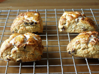vegan raisin scones