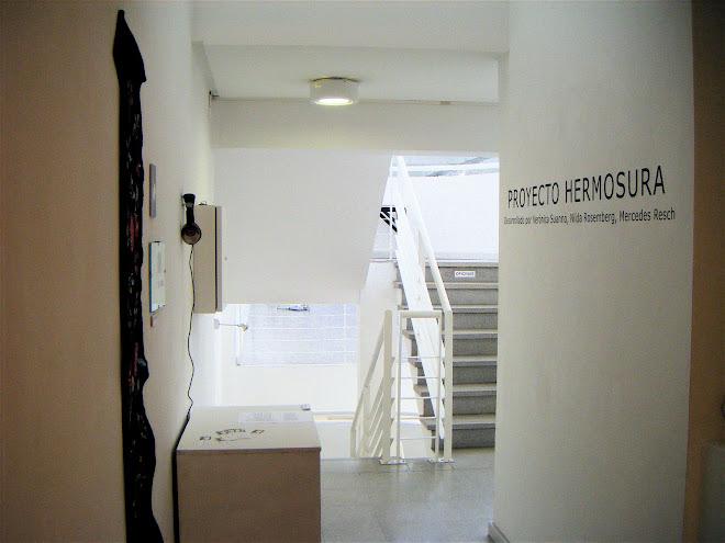 Museo de Arte Contemporáneo  Bahía Blanca 06/ 03/09