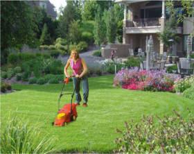 Mundo de las flores jardiner a como crear el c sped for Como plantar cesped natural