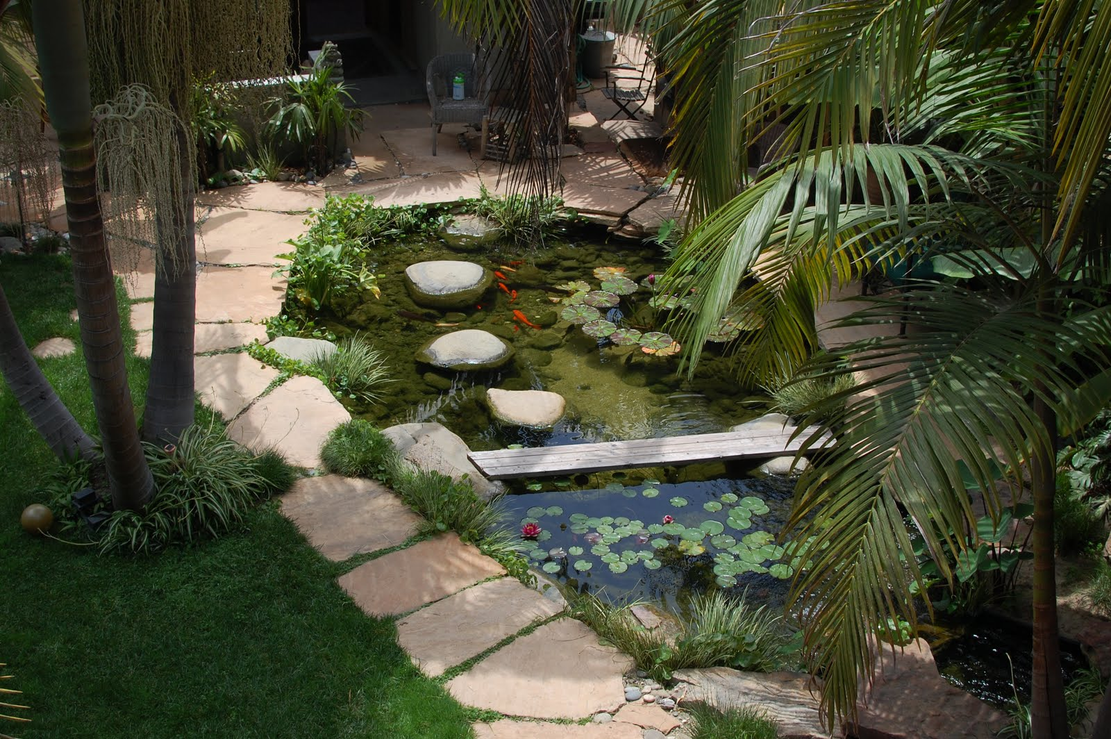 Koi pond from the second floor outdoor bedroom title=