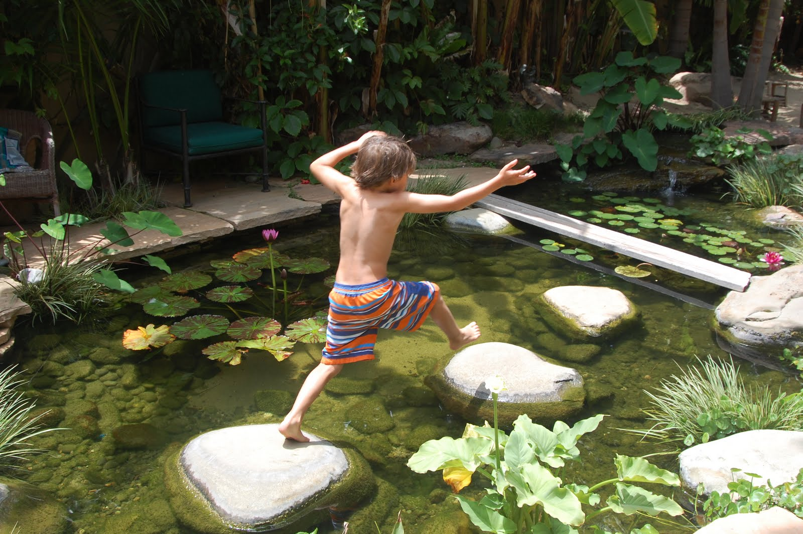 My hotel life balinese paradise in santa monica for My koi pond