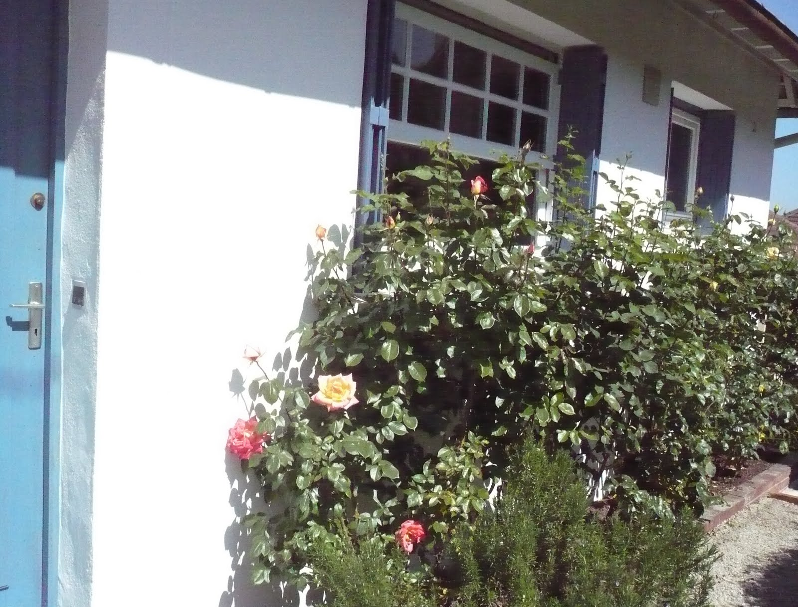 Maison vendre honfleur for Jardin 300m2