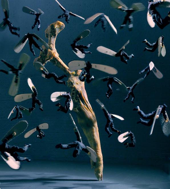 """""""las moscas""""  150x150 cn  (2007)"""