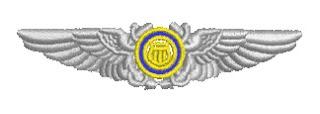 U.S. Coast Guard Auxiliary Pilot Wings