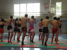 Muay Boran / Muay Thai Kick Boxers