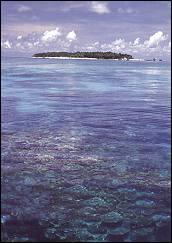 [island.jpeg]