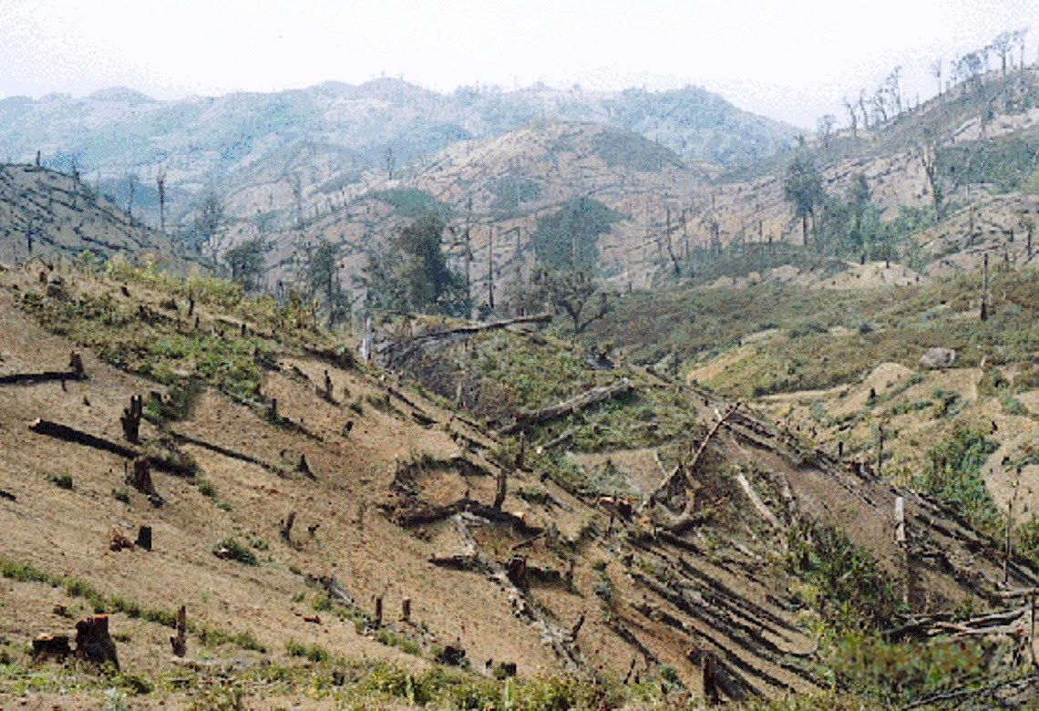 deforestation in third world countries Costa rica can count itself among the world's most effective tropical forest  in  reducing tropical deforestation in 17 countries in central america and  cut its  global warming emissions by one third, some 750 million tons of.