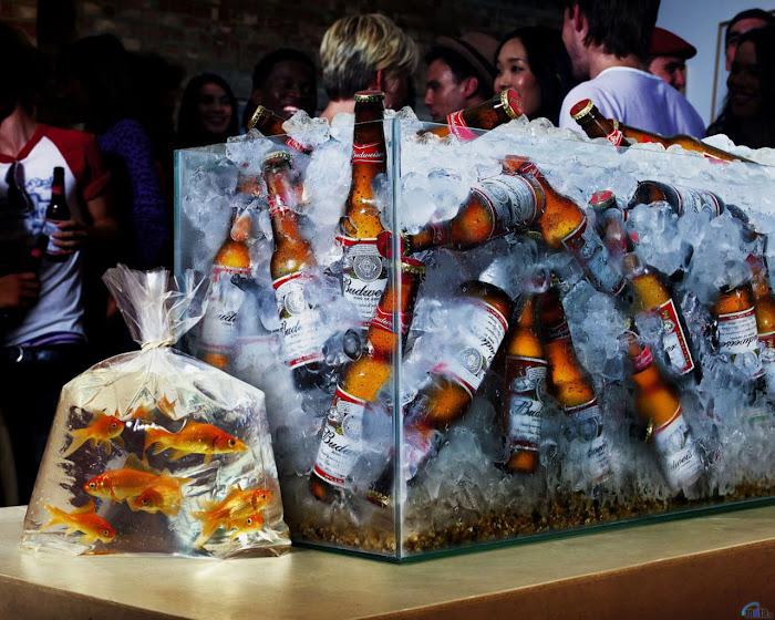 A Cerveja Salvará o Mundo do Mundo
