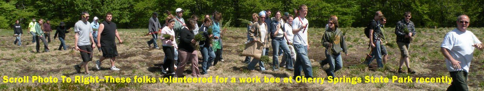 http://2.bp.blogspot.com/_Ah1YLDg8Hfg/S_h6dyUo-wI/AAAAAAAAOg8/SAUmmzWQxM0/s1600/Cherry+Springs++work+bee+2.jpg