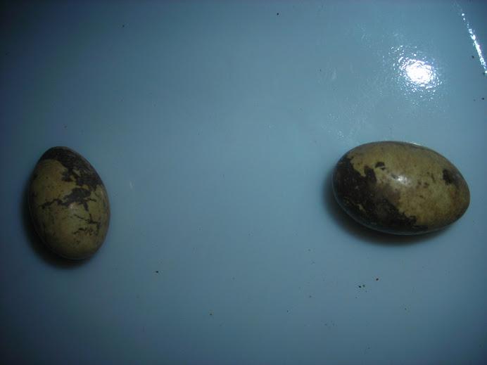 batu kembar