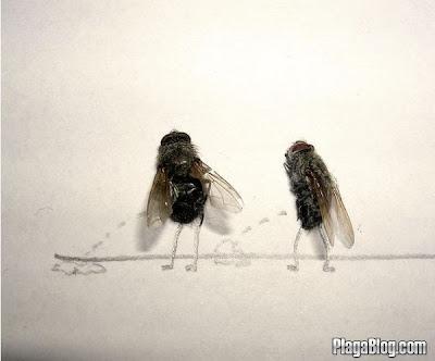 Imagen del Arte con moscas