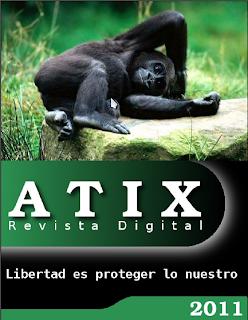 Imagen de la revista Atix número 18