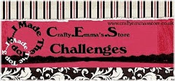 CRAFTY EMMA's STORE CHALLENGES