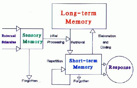 K Burgess Senior Portfolio Memory