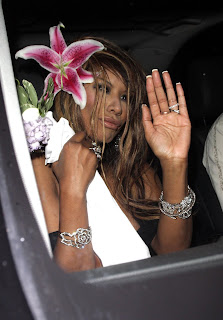 Traci Bingham See Through Pictures